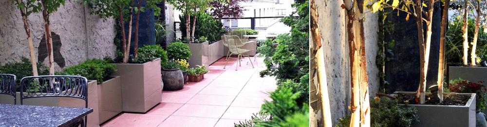 Terrace Rustica